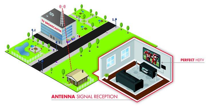 TERK Antenna Signal Quality